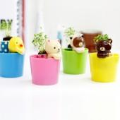 正品 創意辦公室盆栽 迷你植物 植栽 背簍熊盆栽