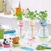 創意可愛桌面辦公室diy 擺件微景觀生態瓶小盆栽迷你水培植物栽培